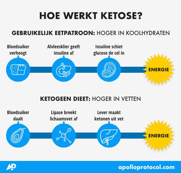 Wat is ketose - Keto dieet
